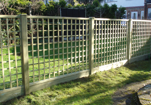 Fence Panel Trellis Fences